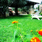 Prato verde e fiorito con le sdraio vicino la sala
